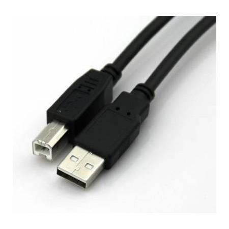 CORDON USB POUR IMPRIMANTE 5m